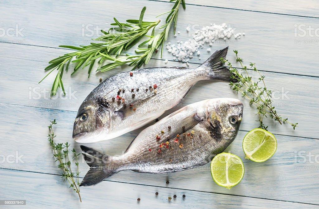 Dorade Royale Fish stock photo