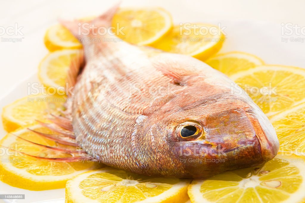 Dorado on a lemon royalty-free stock photo