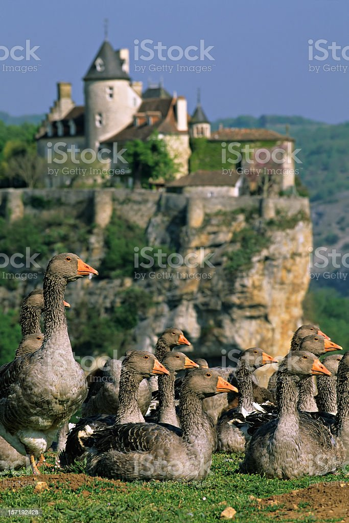 Dordogne Postcard royalty-free stock photo