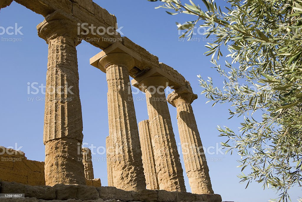 dorics columns with fronds olive tree royalty-free stock photo