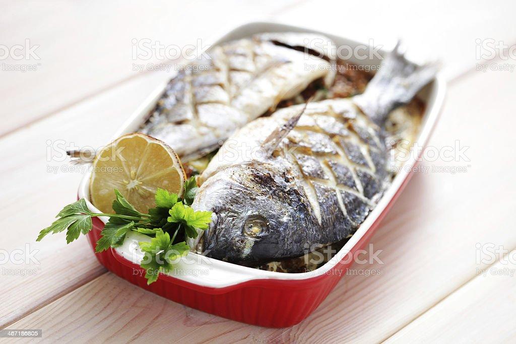 doroada fish royalty-free stock photo