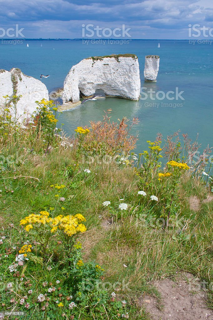 Dorset Coast stock photo
