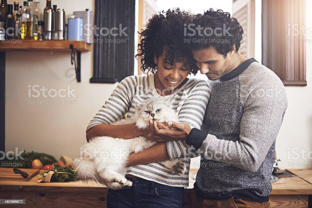 Doting on their furry friend stock photo