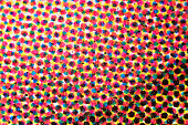 CMYK dots of four-color printing micrograph