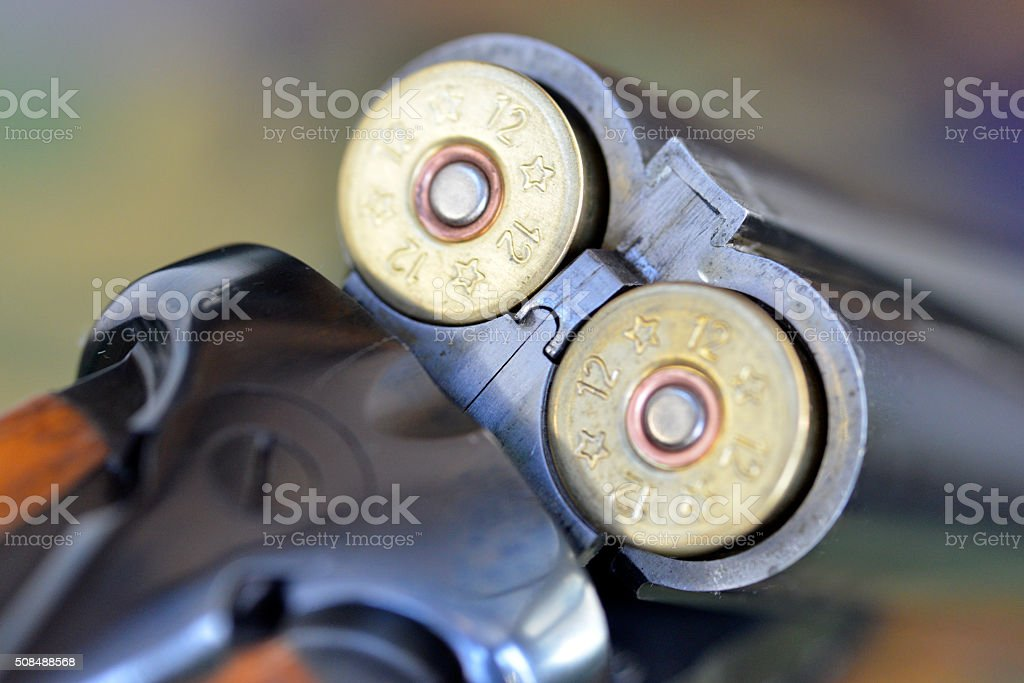 Double barrelled shot gun. stock photo