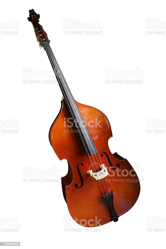 Double Bass stock photo