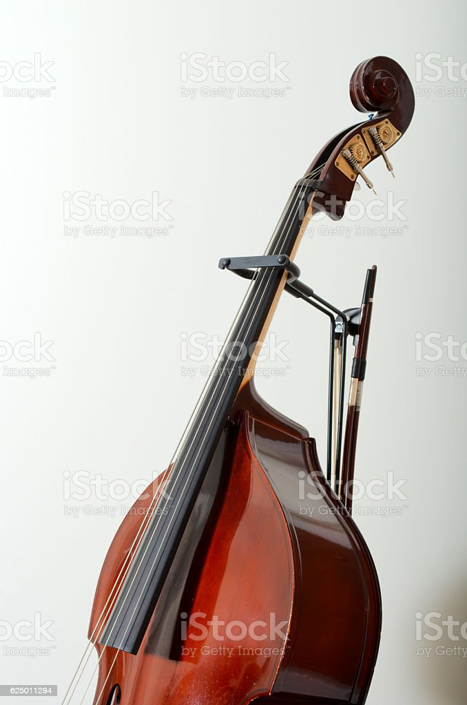Double Bass with bows stock photo