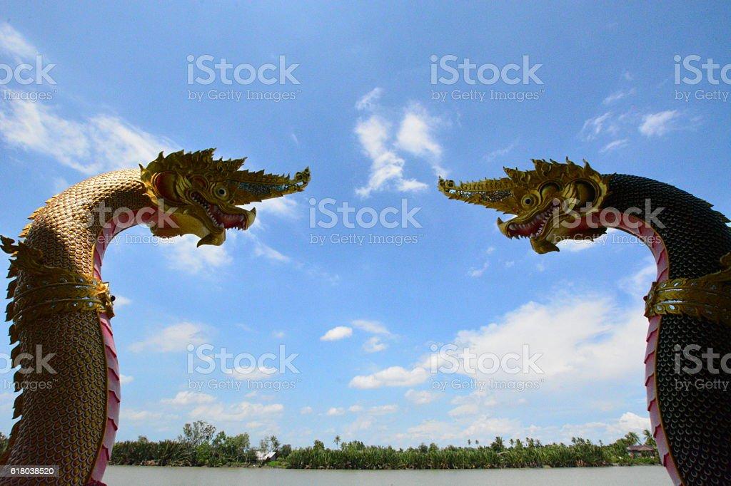 double dragon stock photo