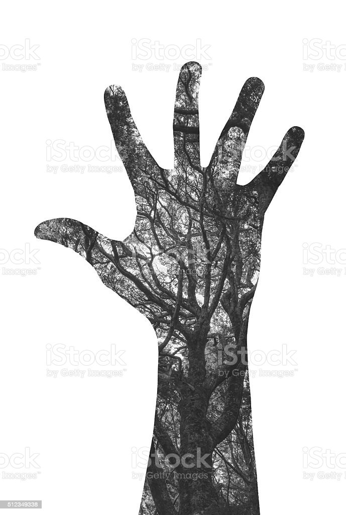 Double exposure image of hand and lush forest stock photo
