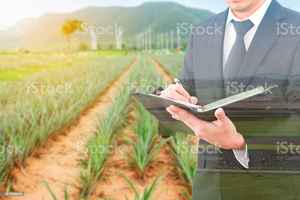 Double exposure of usinessman writing notebook and blurred farm stock photo