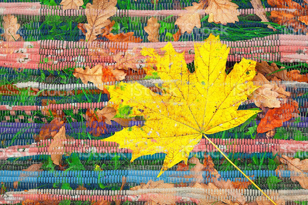 double exposure of yellow maple leaf and Indian textile rug stock photo