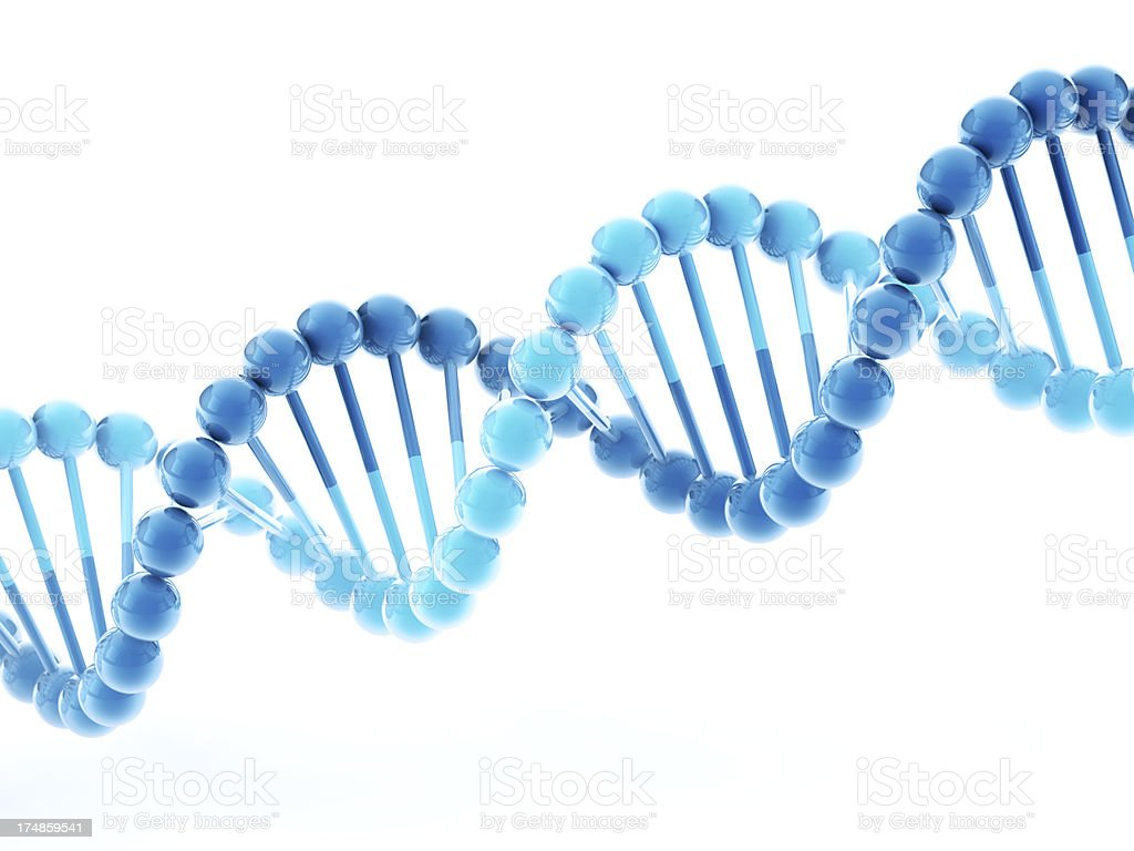 history of the double helix 2 3 in 1953, three english biochemists helped unlock the mystery of life by determining the double helix structure of the dna molecule found in all.