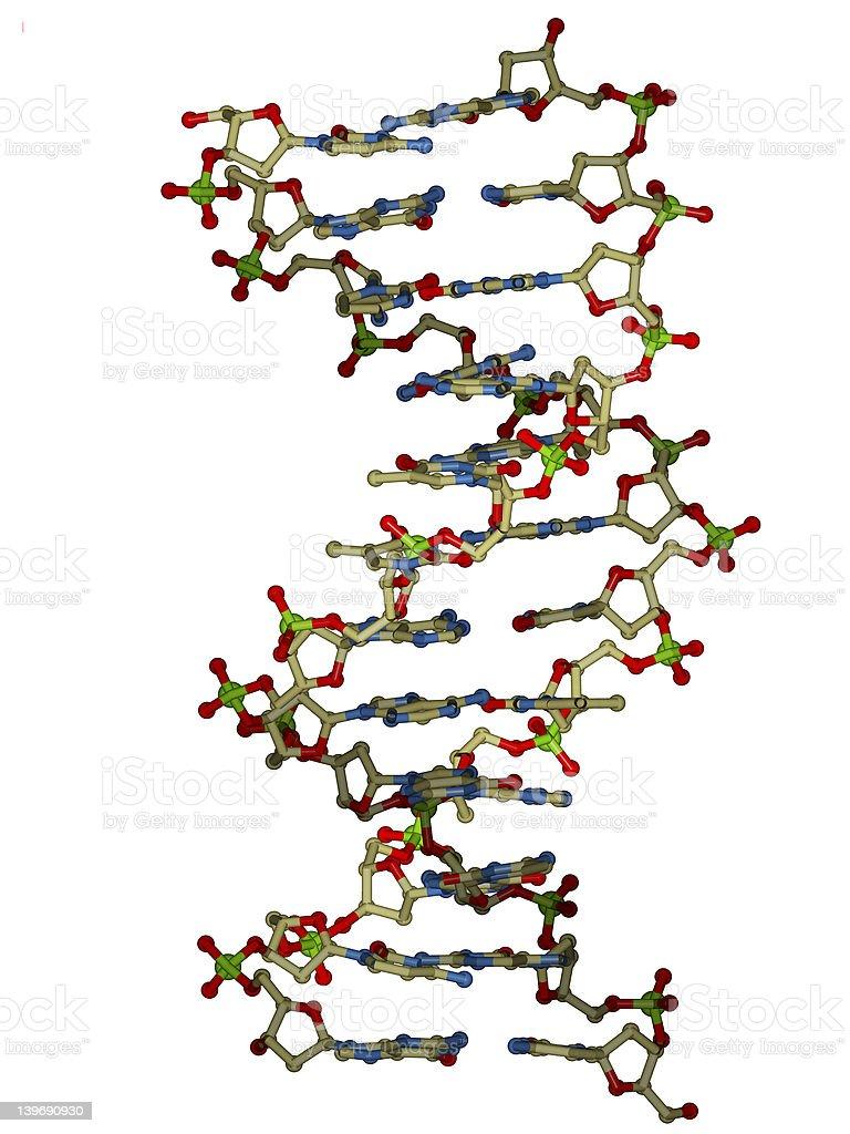 DNA double helix molecule stock photo