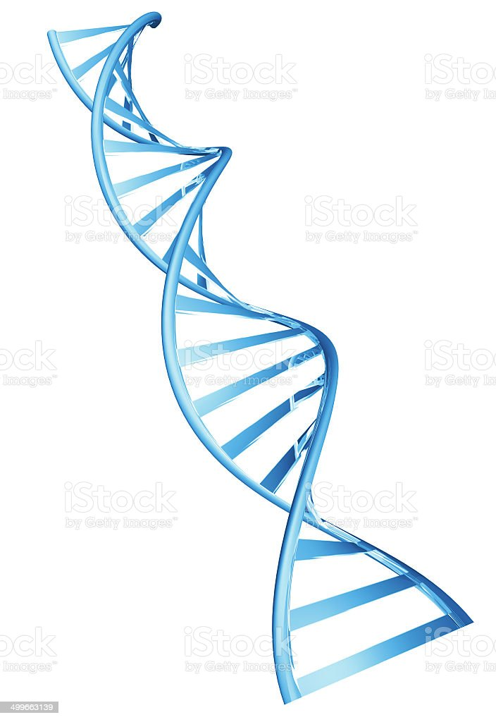 3D double helix spiral structure of a human DNA string stock photo