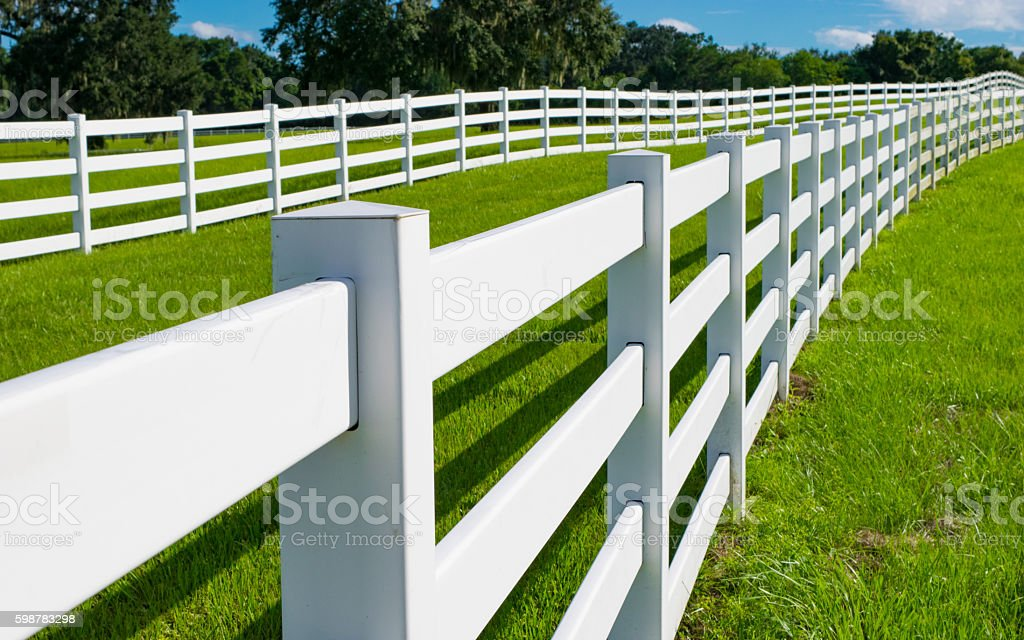 Double Row of White Horse Fencing stock photo