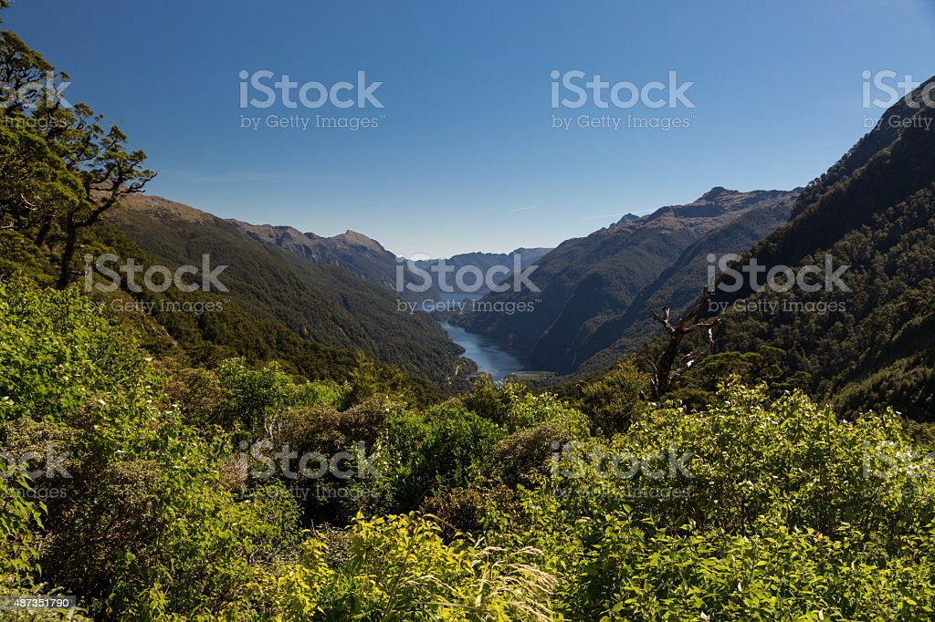 Doubtful Sound Fjord, Fjordland, New Zealand stock photo