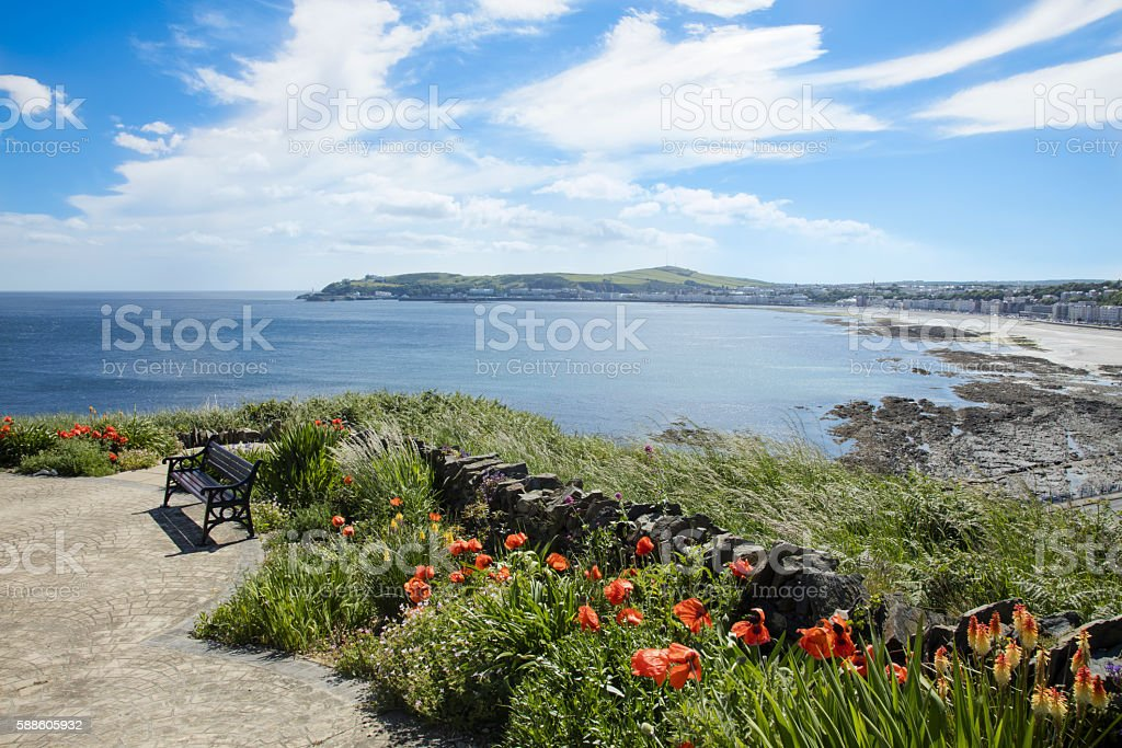 Douglas bay and flowers stock photo