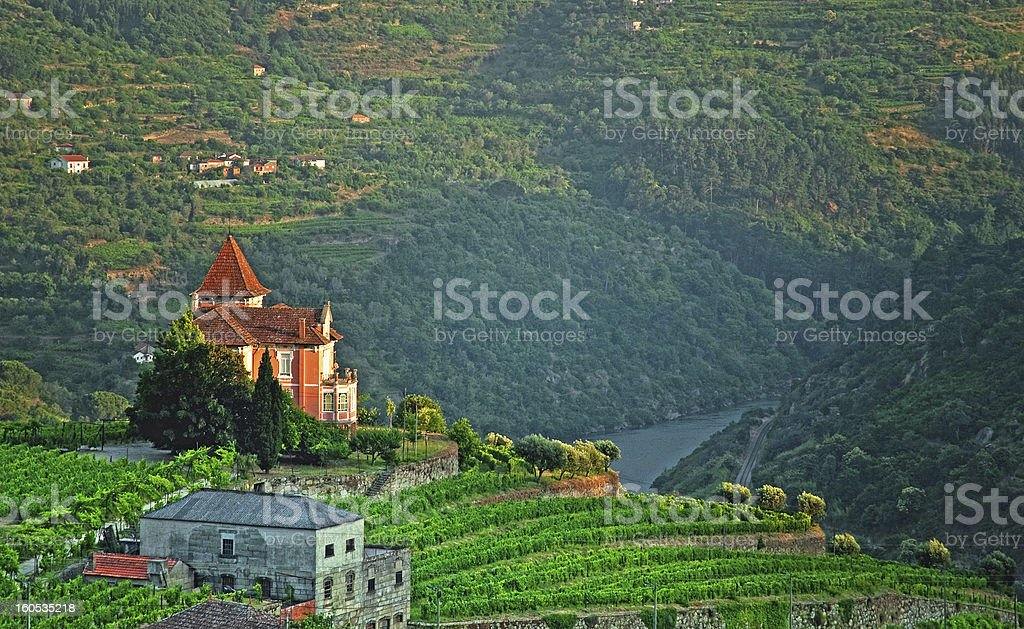 Douro Valley in Portugal royalty-free stock photo