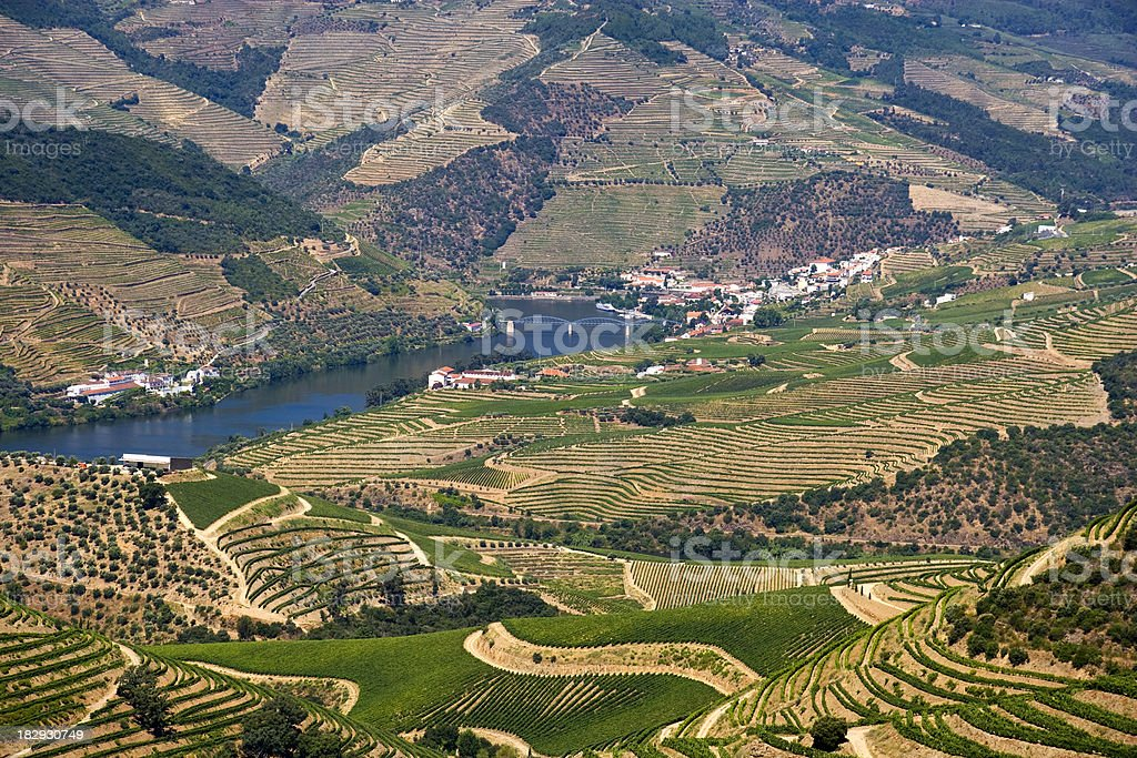 Douro Valley royalty-free stock photo