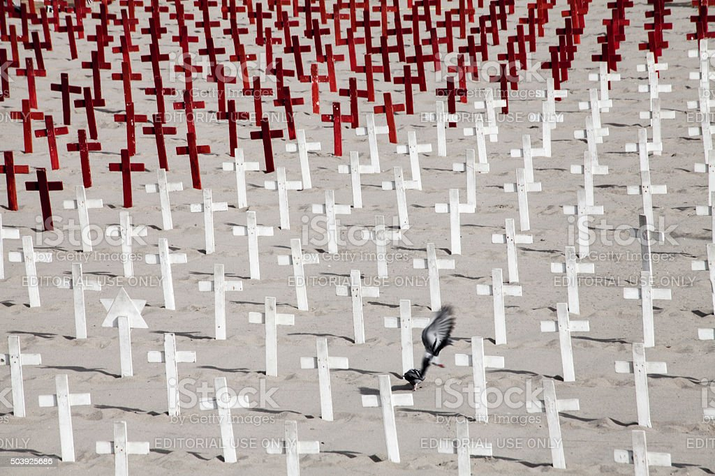 Dove in the middle of hundreds of crosses. stock photo