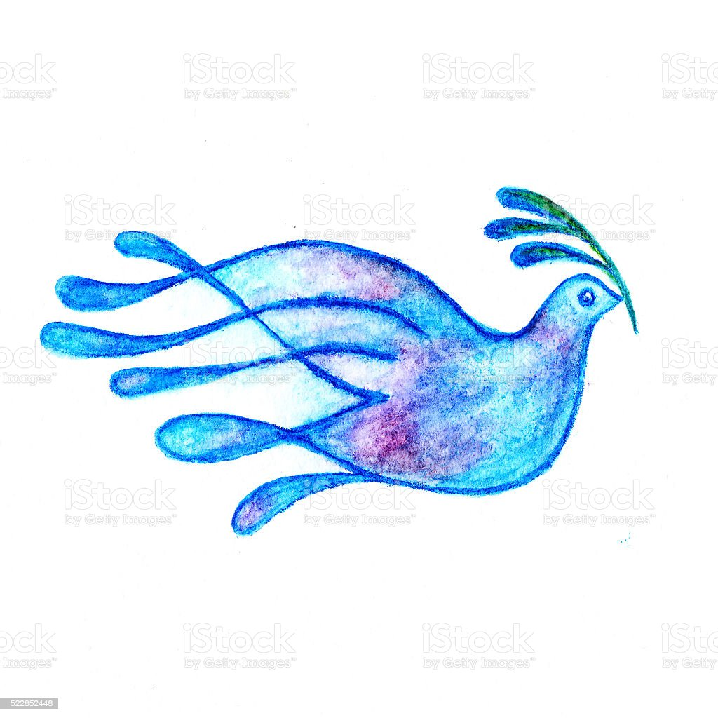 Dove with olive branch watercolor pencils drawing stock photo