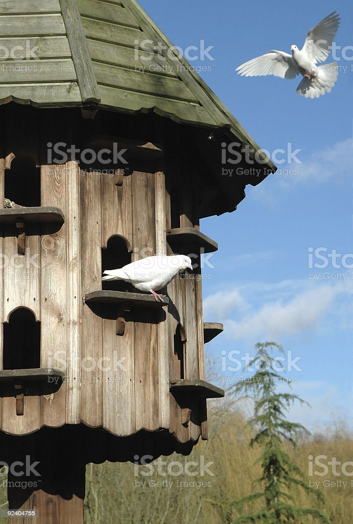 dovecote royalty-free stock photo