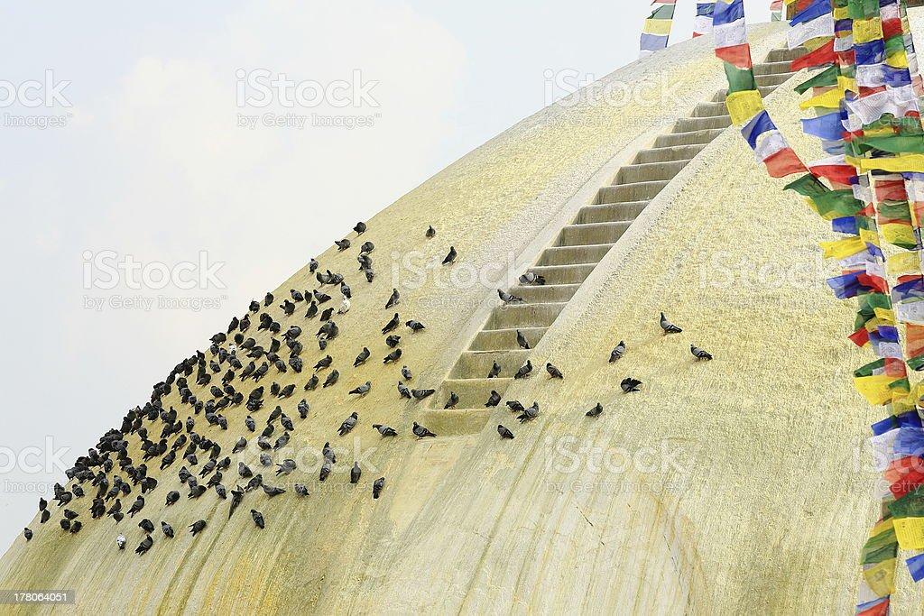 Doves on the Bouhanath-Bodhnath stupa. Kathmandu-Nepal. 0325 royalty-free stock photo