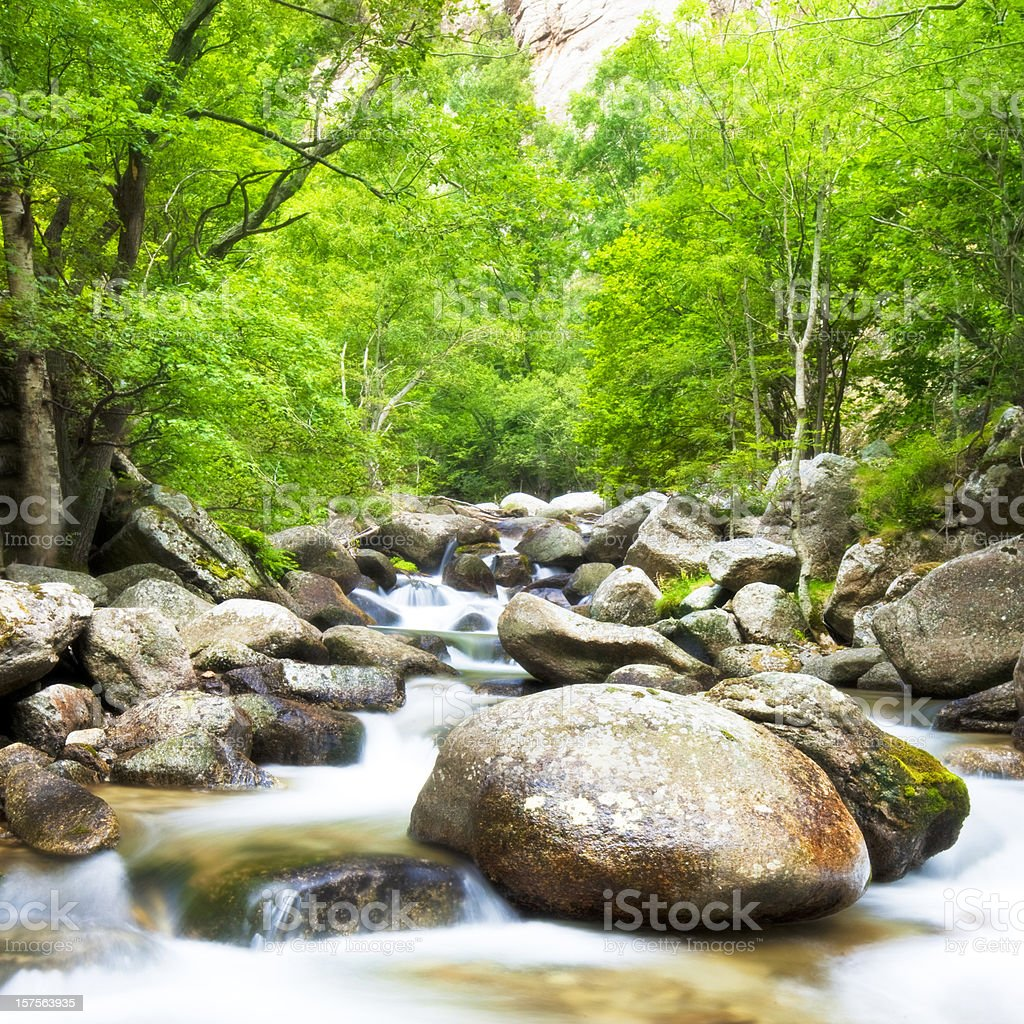 Down from the Pyrenees royalty-free stock photo