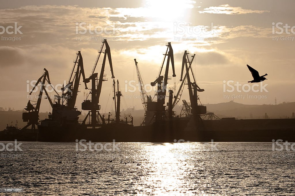 down in a harbor royalty-free stock photo