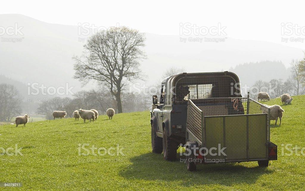 Down on the farm stock photo