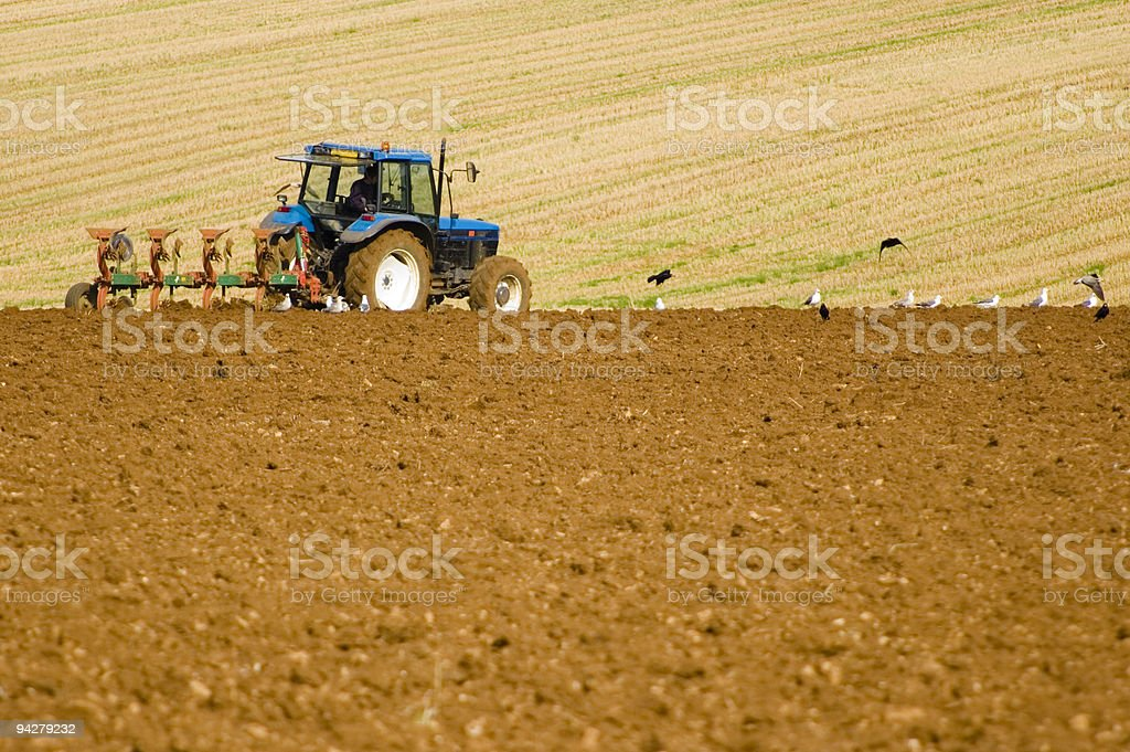 Down on the farm royalty-free stock photo