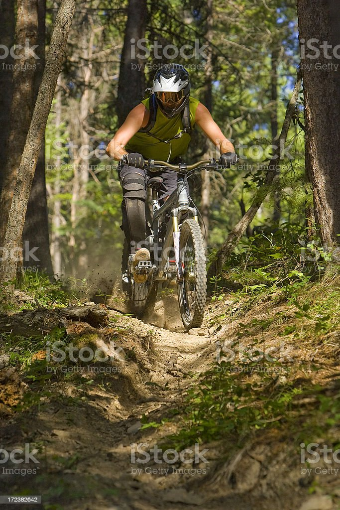 Downhill Mountain Bike royalty-free stock photo