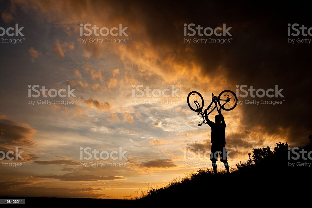 Downhill Mountain Biker Silhouette royalty-free stock photo