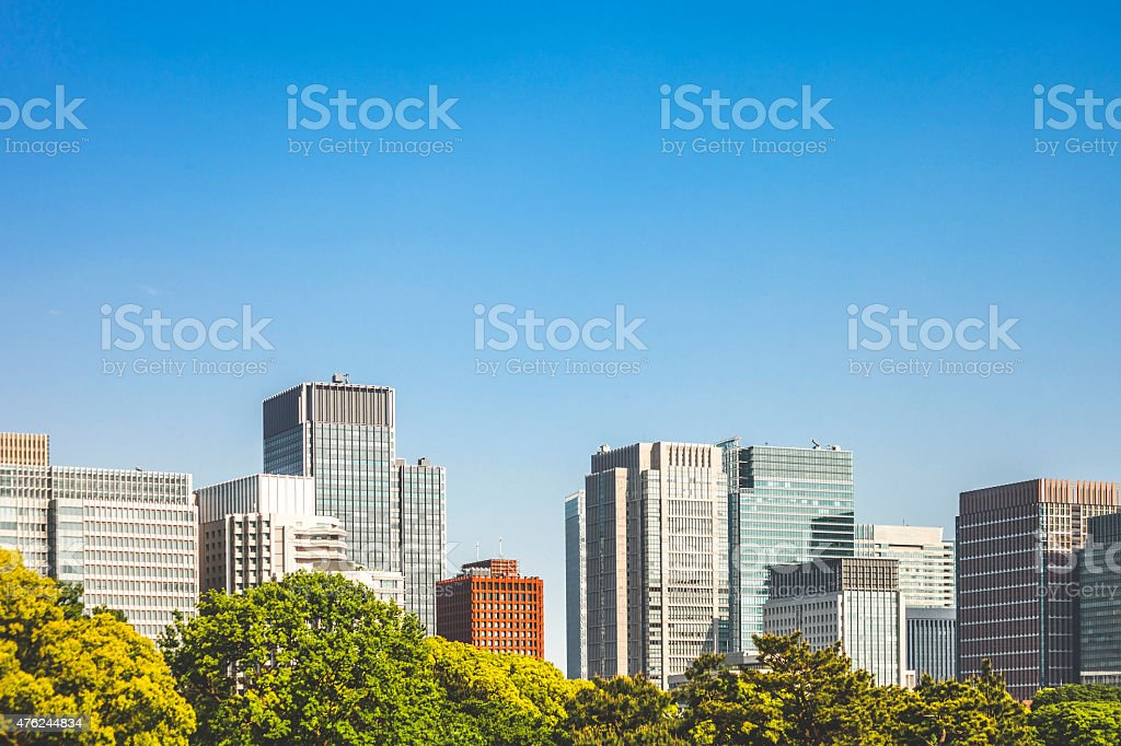 Downtown buildings behind trees. stock photo