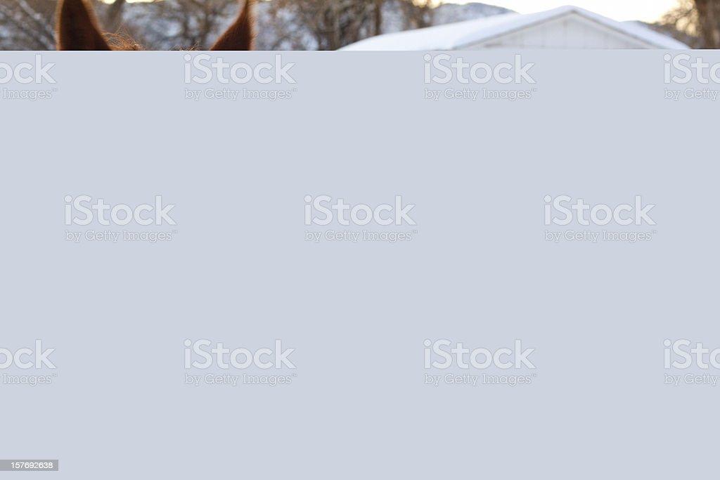 Downtown Christmas Lights stock photo