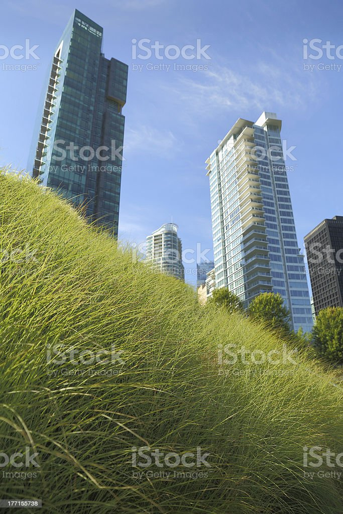 Downtown Green Roof, Vancouver royalty-free stock photo