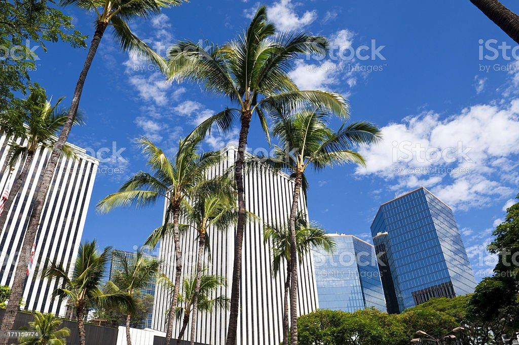 Downtown Honolulu with palm trees and blue sky royalty-free stock photo