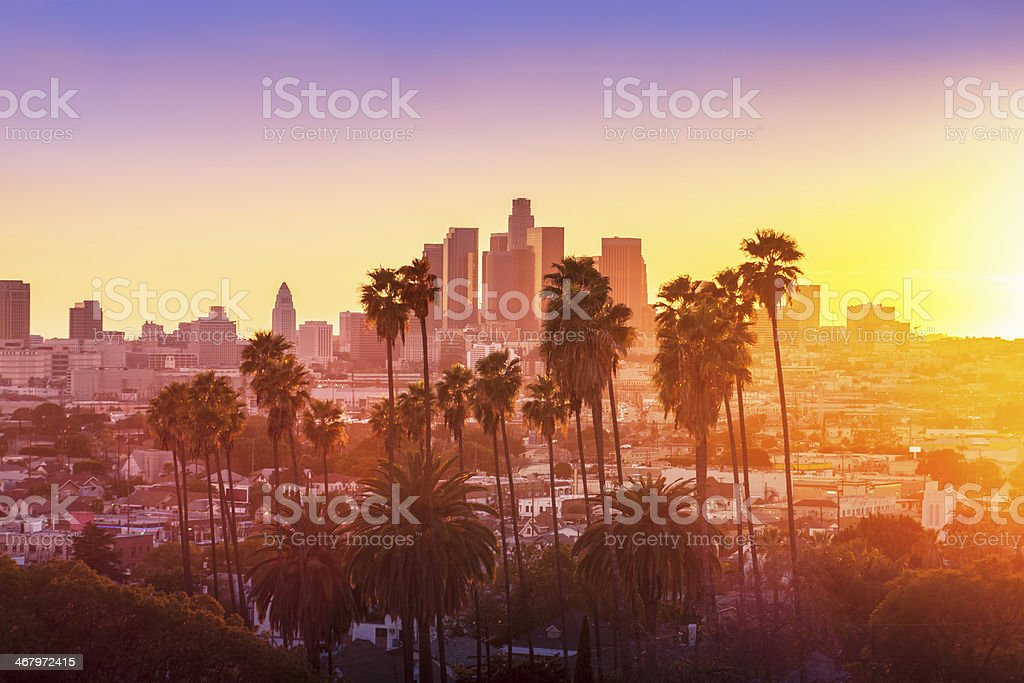 Downtown Los Angeles with Palm Trees in the foreground stock photo