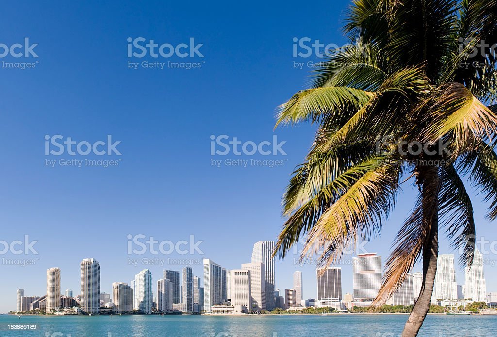 Downtown Miami City Skyline in the USA royalty-free stock photo