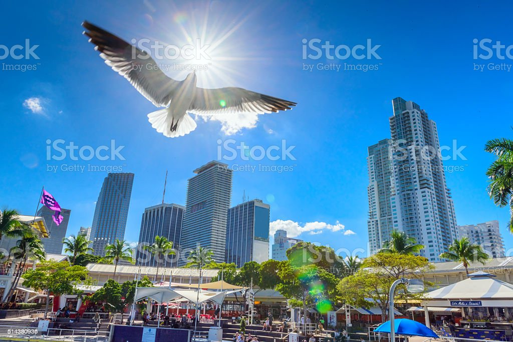 Downtown of Miami, Florida, USA stock photo