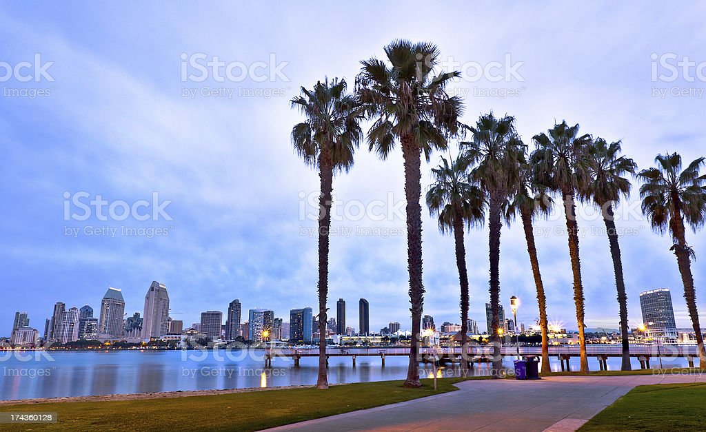 Downtown San Diego, California and Palm Trees stock photo