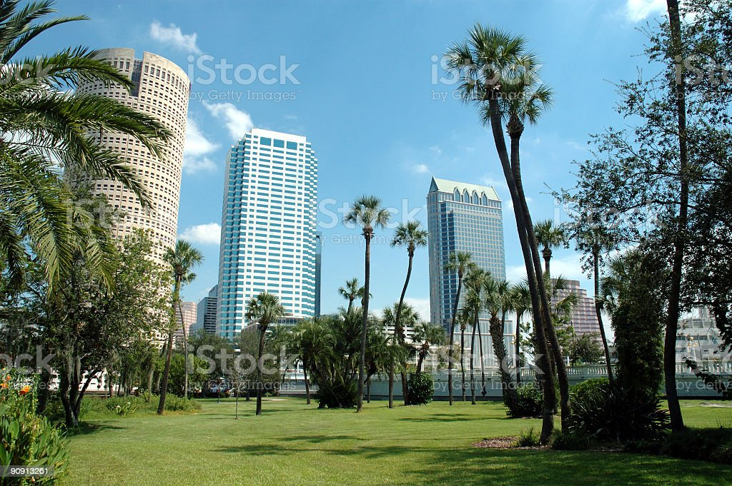 Downtown Tampa - From Plant Park stock photo