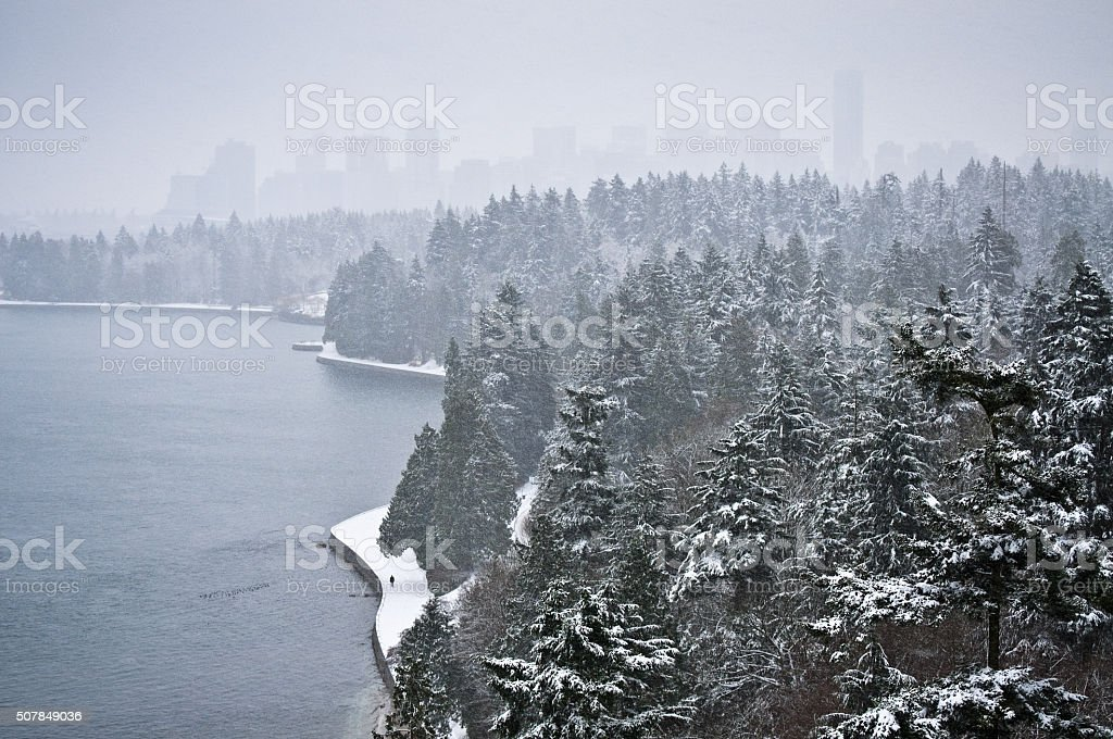 Downtown Vancouver, snow walker and Douglas Firs in Stanley Park stock photo