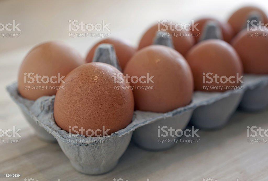 Dozen Brown Eggs in Carton stock photo