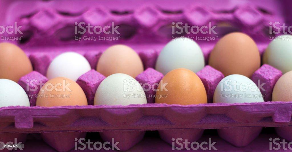 Dozen Farmers Market Eggs in Bright Pink Carton (Close-Up) stock photo