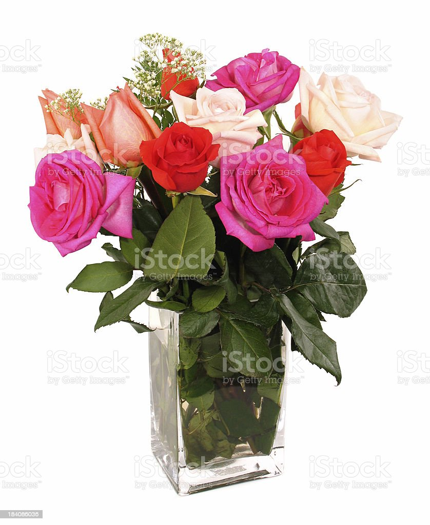 Dozen Multi-Colored Roses royalty-free stock photo