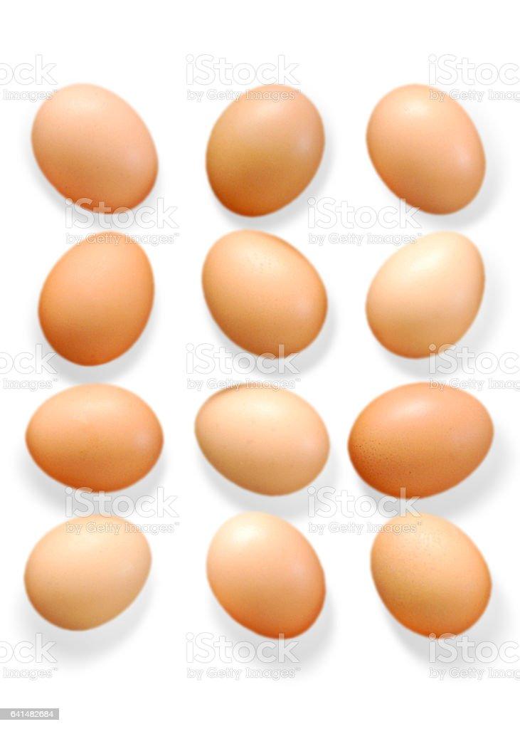 Dozen Organic Chicken Eggs In 4 Rows stock photo