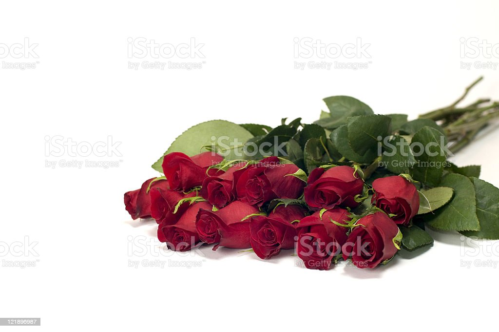 Dozen Red Roses Isolated on White royalty-free stock photo