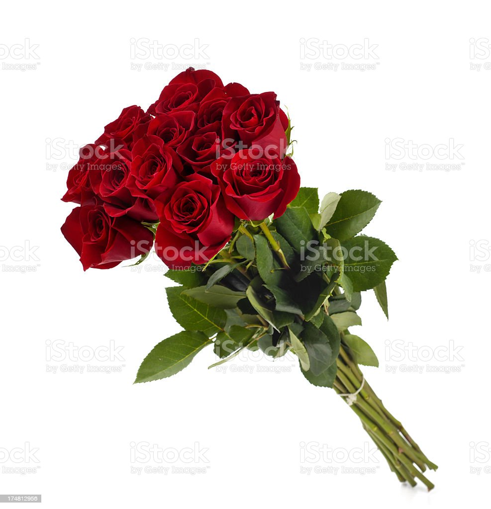 Dozen Roses stock photo