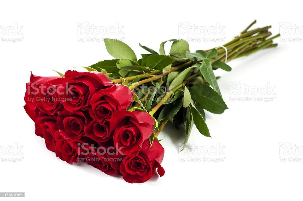 Dozen Roses stock photo